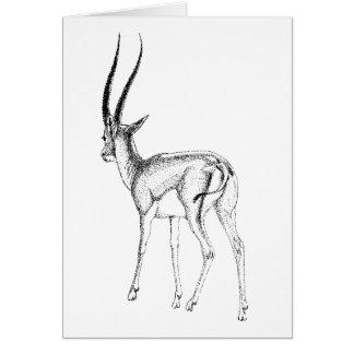 Grant's gazelle  study Birthday Card