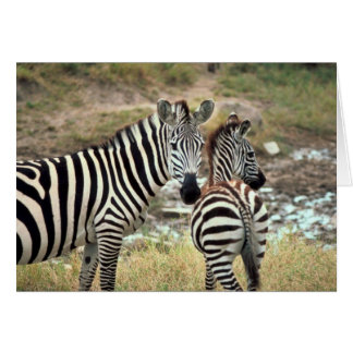 Grant's Zebra Card