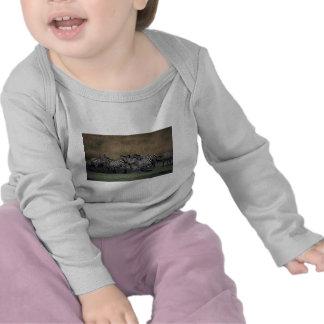 Grant's Zebra - Herd T Shirts