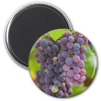 grape and vineyard 6 cm round magnet
