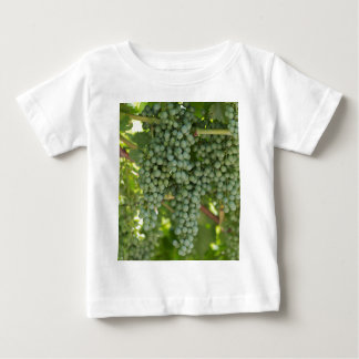 grape and vineyard baby T-Shirt