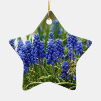Grape Hyacinth Ceramic Star Decoration