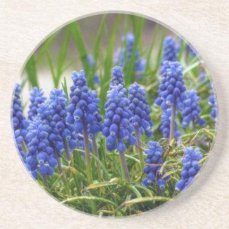 Grape Hyacinth Coaster