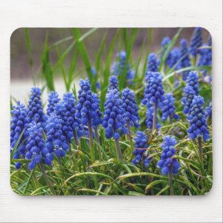 Grape Hyacinth Mouse Pad