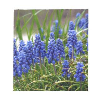 Grape Hyacinth Notepad