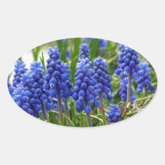 Grape Hyacinth Oval Sticker