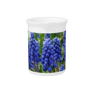 Grape Hyacinth Pitcher