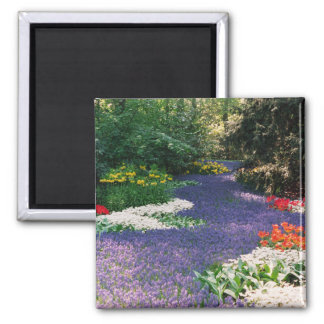 Grape Hyacinth River Magnet