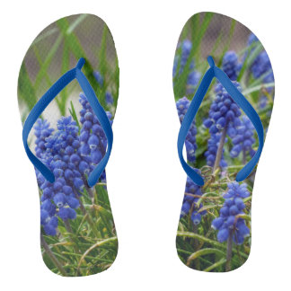 Grape Hyacinth Thongs