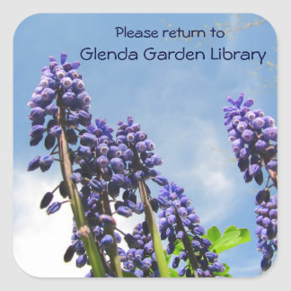 Grape Hyacinths Bookplate ~ sticker