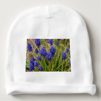 Grape Hyacinths Family Baby Beanie