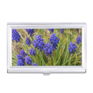 Grape Hyacinths Family Business Card Holder