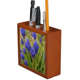 Grape Hyacinths Family Desk Organiser