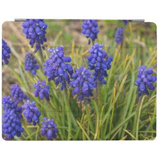 Grape Hyacinths Family iPad Smart Cover