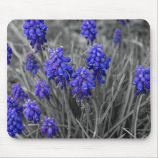 Grape Hyacinths Family Select Mouse Pad