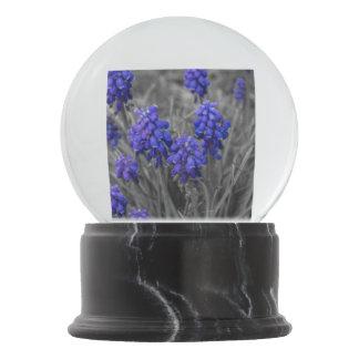 Grape Hyacinths Family Select Snow Globe