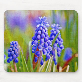 Grape Hyacinths Mouse Pads