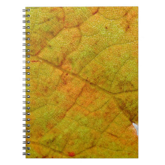 Grape Leaf Underside Notebooks