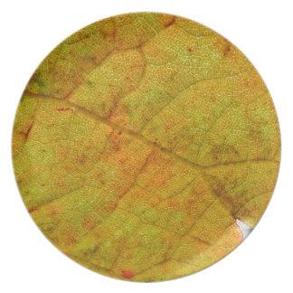 Grape Leaf Underside Plate