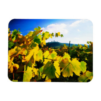 Grape Leaves and the Sky Vinyl Magnets