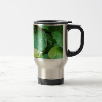 Grape Vine Coffee Mugs