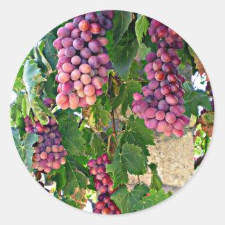 Grape Vine Round Sticker