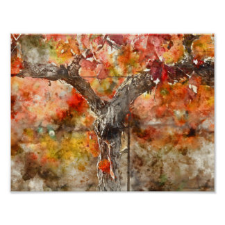Grape Vines in the Fall Poster
