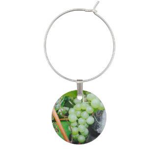 Grape wine charms