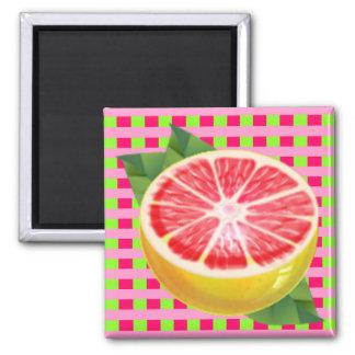 Grapefruit Plaid Magnet