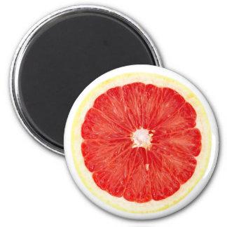 Grapefruit slice magnet