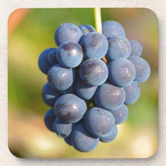 Grapes Beverage Coasters