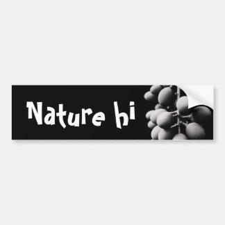 grapes for a sour day car bumper sticker