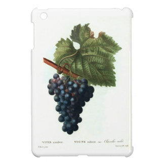 Grapes iPad Mini Covers