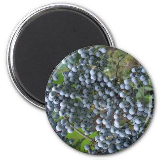 Grapes Refrigerator Magnet