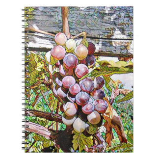 grapes. notebook