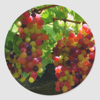 Grapes On A Vine Sticker