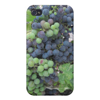 Grapes on the Vine, Aron Hill Vineyard iPhone 4/4S Case