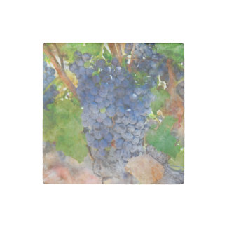 Grapes on the Vine in Napa Valley California Stone Magnet