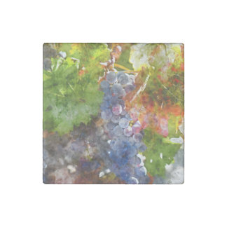 Grapes on the Vine in the Autumn Season Stone Magnet