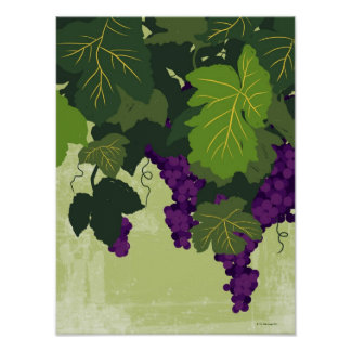 Grapes on the Vine Poster