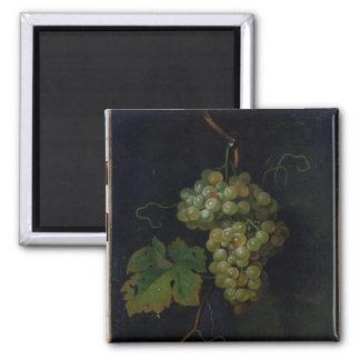 Grapes Square Magnet