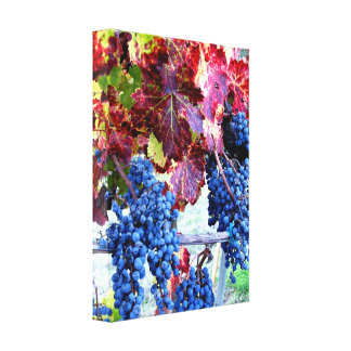 Grapes & Vines   Wrapped Canvas