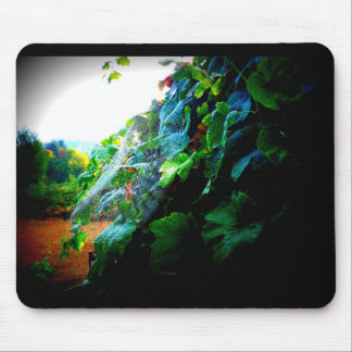 Grapevine at Sunrise Mouse Pad