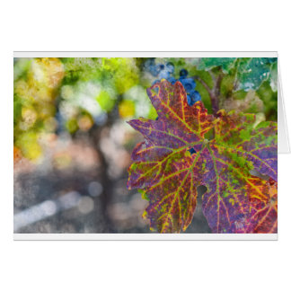 Grapevine in the Autumn Season Card