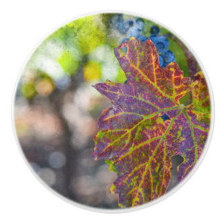 Grapevine in the Autumn Season Ceramic Knob