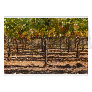 Grapevines in the Fall Card