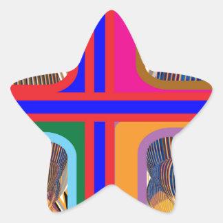 Graphic Abstract Line Art Star Sticker