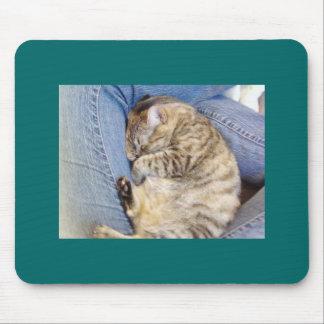 Graphic Cat Mousepad