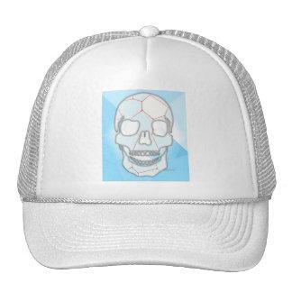 graphic trucker hats