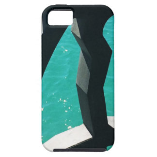 Graphic iPhone 5 Cover